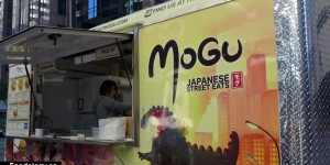 mogu-window