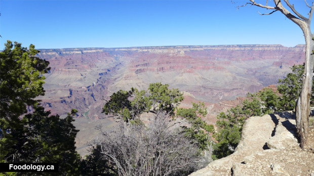 grand-canyon-railless