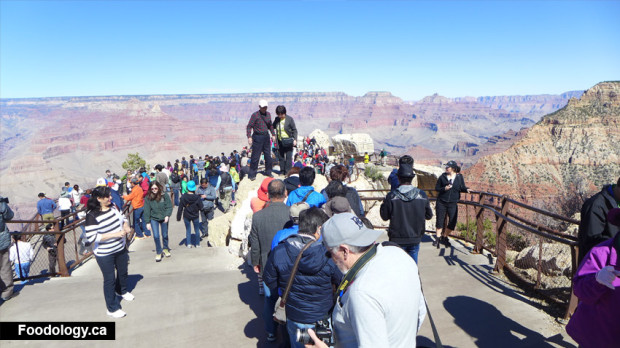 grand-canyon-tourist