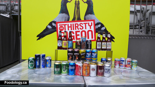 BC-Place-thirsty-pigeon