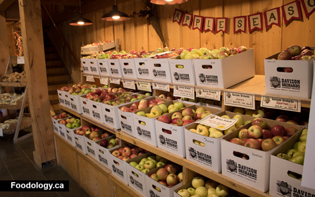 davidson-orchards-apple-box