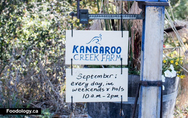 kangaroo-creek-farm