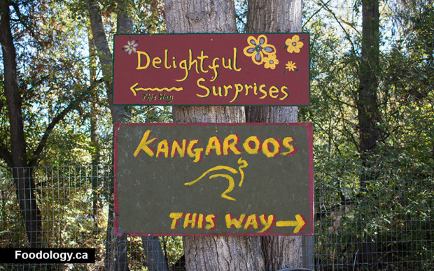 kangaroo-creek-farm-sign