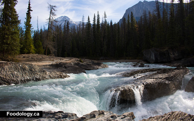 yoho-natural-bridge-river