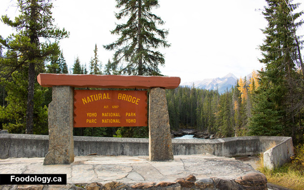 yoho-natural-bridge-sign