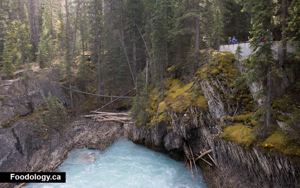 yoho-natural-bridge-view
