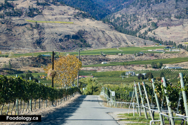 silver-sage-winery-1