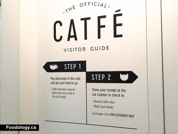 catfe-vancouver-2