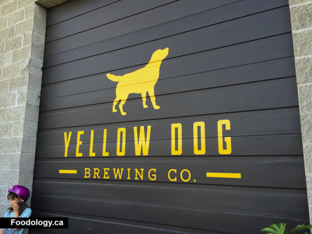 yellow-dog-brewing-7