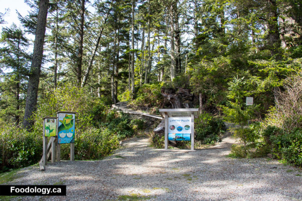 ucluelet-big-beach-2