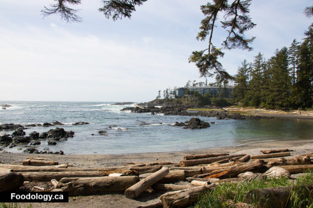 ucluelet-big-beach-3
