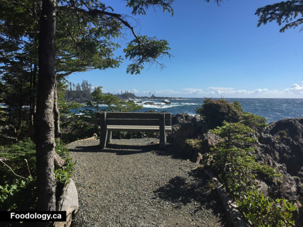 ucluelet-big-beach-black-rock-3
