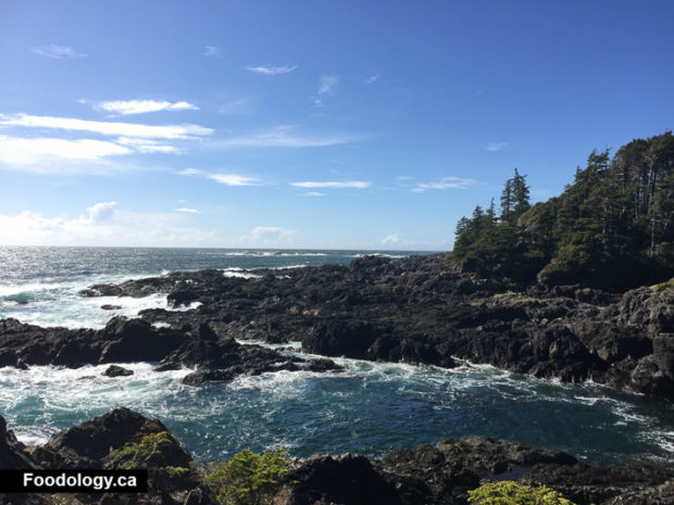 ucluelet-big-beach-black-rock-4
