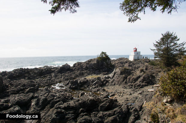 ucluelet-wild-pacific-trail-9