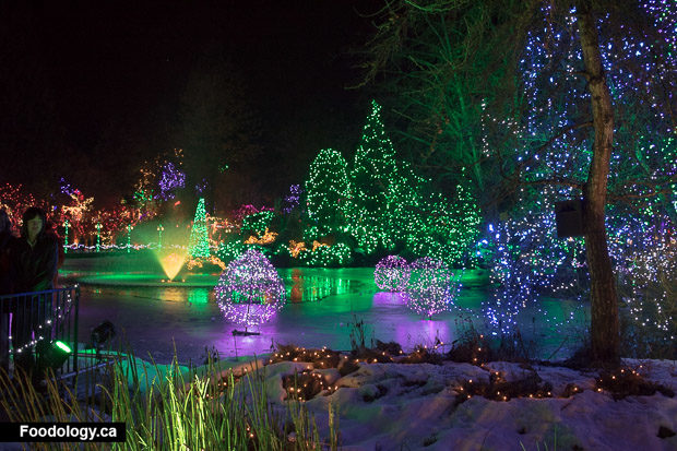 Festival Of Lights At VanDusen Botanical Garden: Review