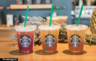 Starbucks: Teavana Shaken Iced Tea Infusions Review