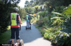 Electric Tour Company: San Francisco Guided Segway Tours